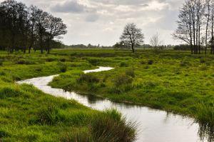 Drenthe-2.jpg