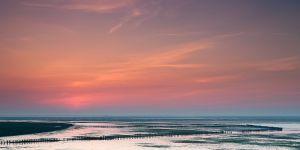 Texel-Waddenzee-zonsopkomst-1.jpg